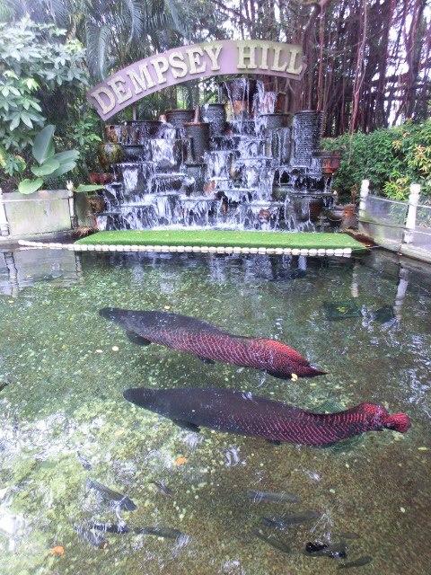 singapour_dempsey_hill_brunch