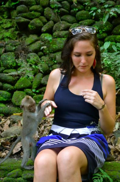 singe_bali_monkey_forest